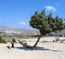Elafonisi-Crete by John (Mike)  Dobson