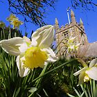 Cornwall: Springtime at St Gennys by Rob Parsons