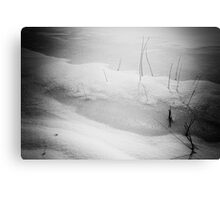 Spring is just around the corner    (Holga style) Canvas Print