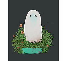 garden ghost Photographic Print