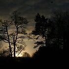 Night sky over Wentworth by Christine  Treece