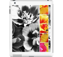 B&W Flowers with Colour Strip iPad Case/Skin