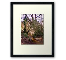 Upton Wood Stream Framed Print