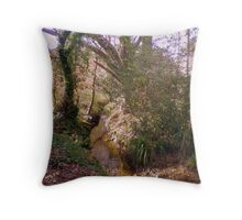 Upton Wood Stream Throw Pillow