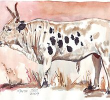 Nguni by Maree  Clarkson