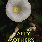 morning glory mum&#x27;s day card by dedmanshootn