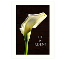 """he is risen"" calla lily Art Print"