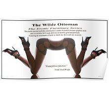 Wilde Ottoman and Conversation Piece.  Poster