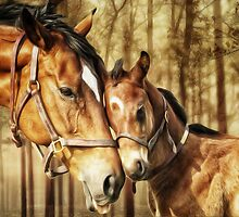 Mare and Foal for Horse Lovers by Shawna Mac