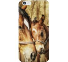 Mare and Foal for Horse Lovers iPhone Case/Skin