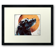 Black Lab Framed Print
