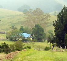 Home, Krambach.  NSW.  Australia by Margaret Stockdale