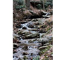 Cold Spring Singing Along Photographic Print