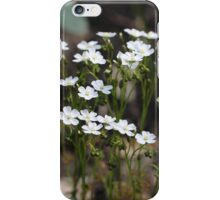 Drosera Collection iPhone Case/Skin