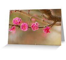 spring series one Greeting Card
