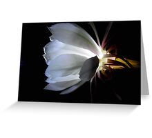 Moon flower by torch light. Greeting Card