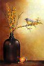 Autumn Warbler  by Renee Dawson