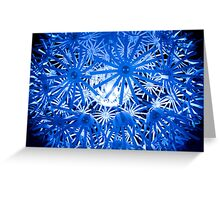 inner light 2 Greeting Card