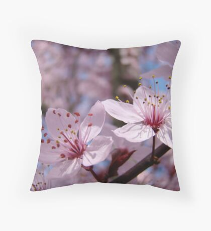 Pastel Spring Tree Blossoms Pink Blue Sky Baslee Troutman Throw Pillow