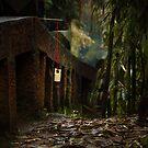 bamboo sea ... by BrainCandy