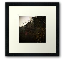 bamboo sea .... Framed Print