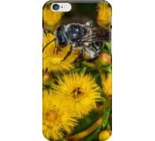 Native Bee on Yellow Wildflowers iPhone Case/Skin