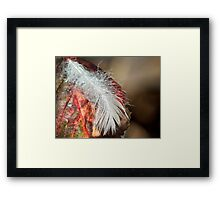 Stolen Light Framed Print