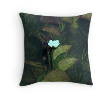 Water Lily, Margaret River Throw Pillow