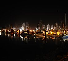 BodegaBay  •  Starlit Harbor by Richard  Leon