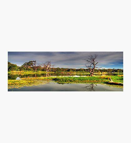 Wetlands Magic - Wonga Wetlands, Albury Australia - The HDR Experience Photographic Print