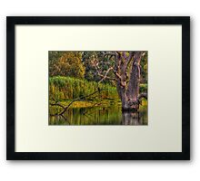 Murray Magic - Wonga Wetlands, Albury , Australia - The HDR Experience Framed Print