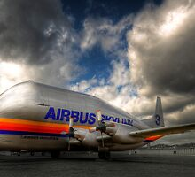 Airbus Super Guppy #3 (with a little HDR) by HKart