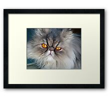 To err is human, to purr is feline.  ~Robert Byrne Framed Print