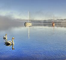 A Great Day For Swanning About... by Jamie  Green