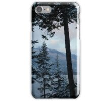 Snowfall iPhone Case/Skin