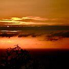 Kohala Coast Sunset by Madison Jacox