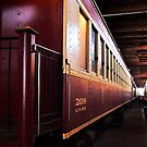 The Tarantula Train - Fort Worth , Texas by jphall