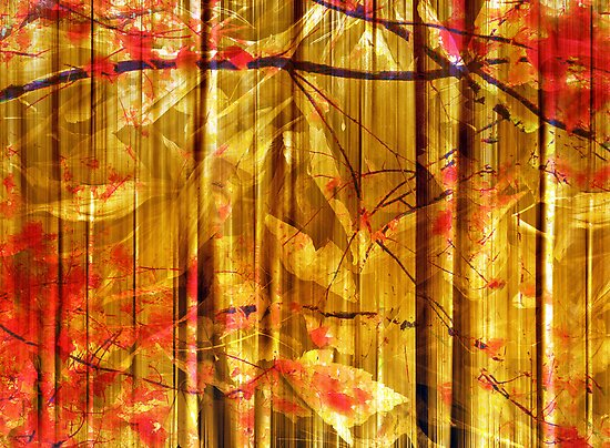 Autumn Abstract by Jessica Jenney