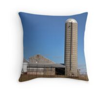 Sunny day farm scene Throw Pillow