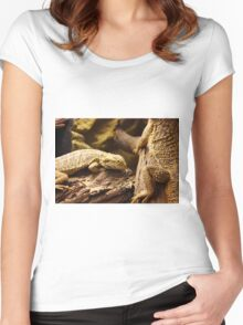 Bearded dragons Women's Fitted Scoop T-Shirt