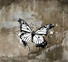 ButterFLY by DirtyNortherner