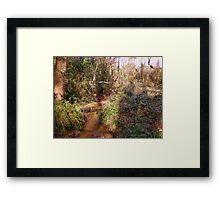 Woodland stream with bridge in Upton Wood Framed Print