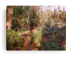 Woodland stream with bridge in Upton Wood Canvas Print