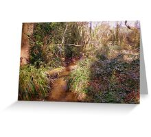 Woodland stream with bridge in Upton Wood Greeting Card