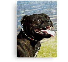 Doggy smile - cheese for the camera Canvas Print