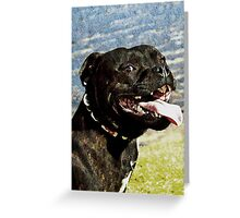 Doggy smile - cheese for the camera Greeting Card