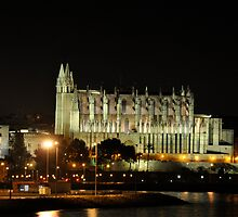 Palma De Mallorca`s Cathedral at night,,, by Alex Hardie