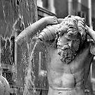 Fontana dell'Amenano by Andrea Rapisarda