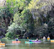 Colorful Kayaks, Rainbow River by AuntDot