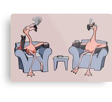 Boston Legal Flamingos  Metal Print